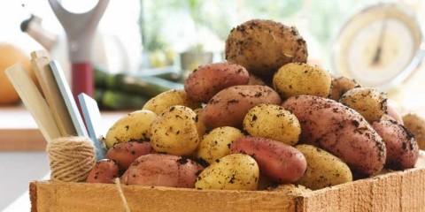 cassetta-di-patate