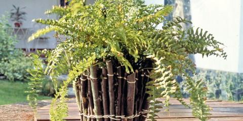 vaso-rustico-con-legnetti