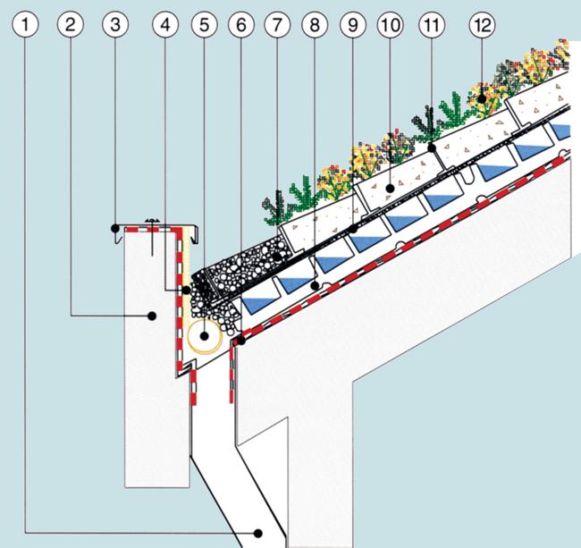 Come si compone il tetto verde