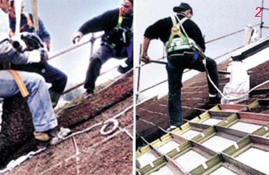foto di realiazzazione piante sul tetto