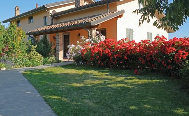 Progettare un giardino in collina fai da te in giardino for Decorazione giardino fai da te