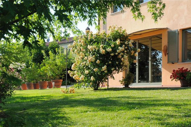 Progettare un giardino in collina fai da te in giardino for Progettare un interno