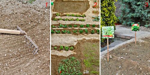 foto di semina dell'orto
