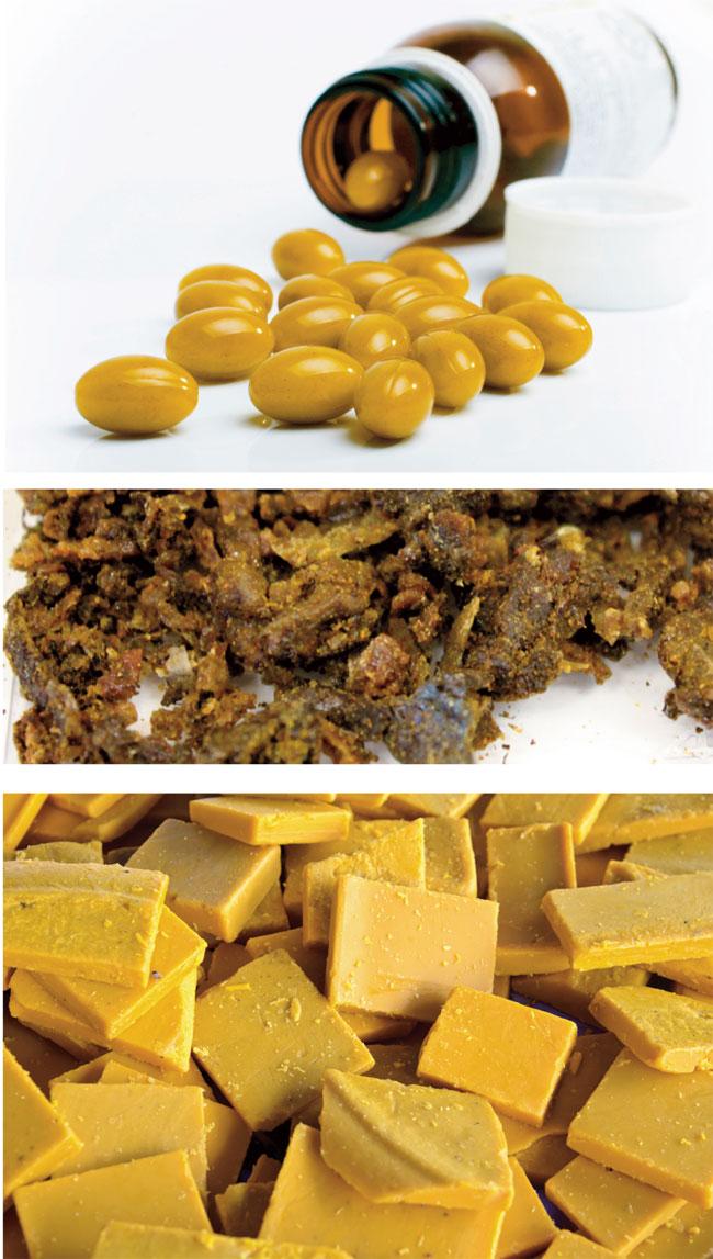 allevare api, apiario, allevamento api, arnie per api, materiale apistico, alveari, miele, farsi il miele
