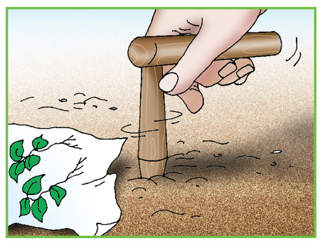 attrezzi a manico corto, attrezzi da giardino, attrezzi giardinaggio, giardinaggio, zappetta, paletta, piantabulbi, trapiantatore, estirpatore, sarchiatore, manici intercambiabili