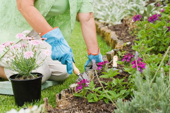 Attrezzi a manico corto da giardino