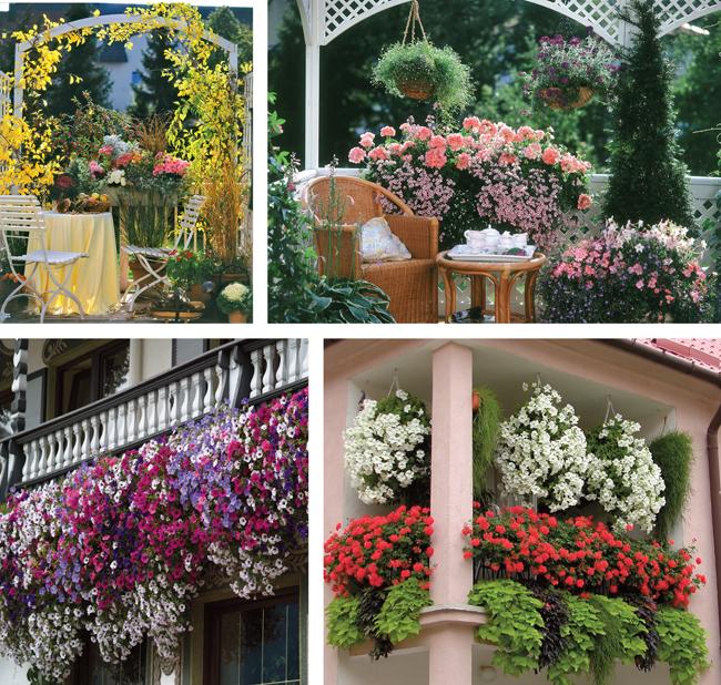 Balconi fioriti e terrazzi fioriti  Come progettarli in dettaglio