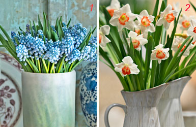 Piantare i bulbi per colorate bordure primaverili in giardino - Bulbi estivi quando piantarli ...
