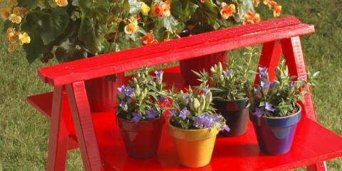 cavalletto-per-piante
