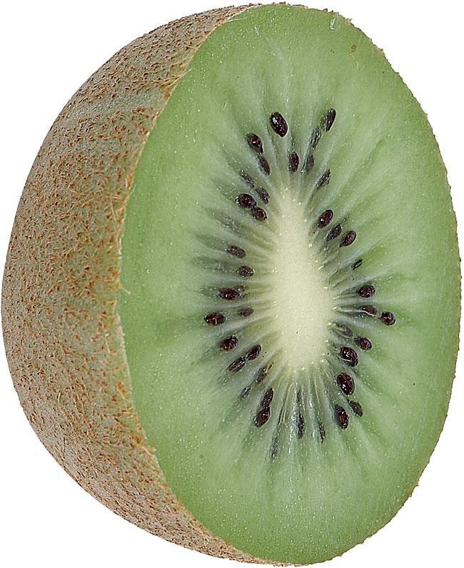 coltivare kiwi, kiwi, coltivazione kiwi, kiwi coltivazione, coltivazione del kiwi, potatura kiwi, pianta kiwi, pianta di kiwi, kiwi pianta