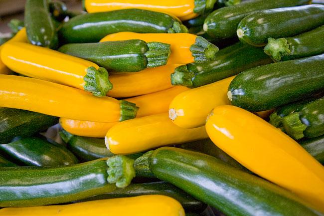 Coltivare zucchine gustose