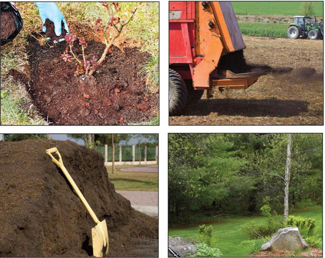 come usare il fertilizzante