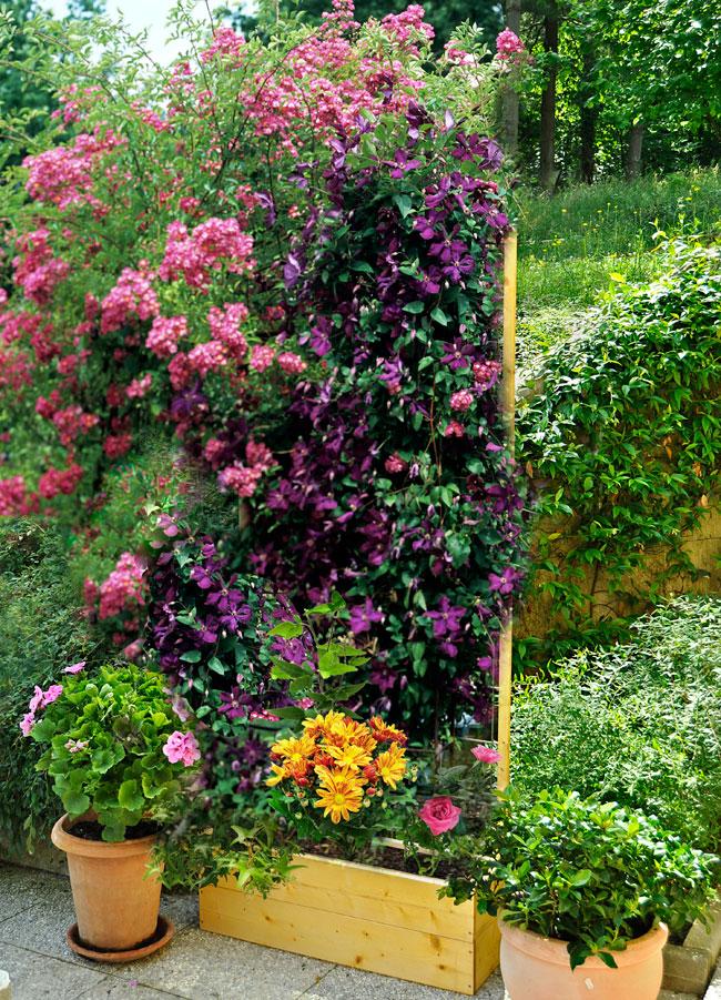Costruire una fioriera con spalliera di legno