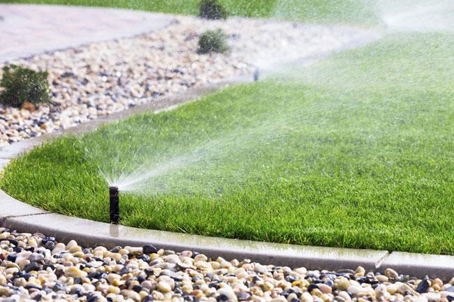 impianto di irrigazione interrata fai da te in giardino