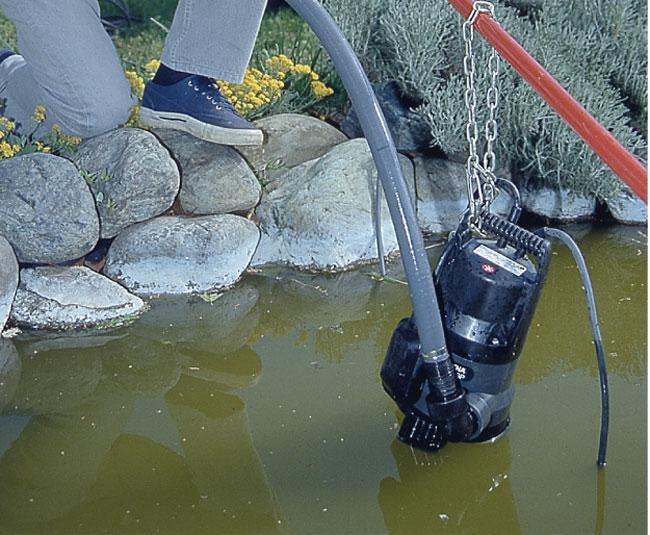 Manutenzione laghetto artificiale fai da te in giardino for Pompa per vasca pesci