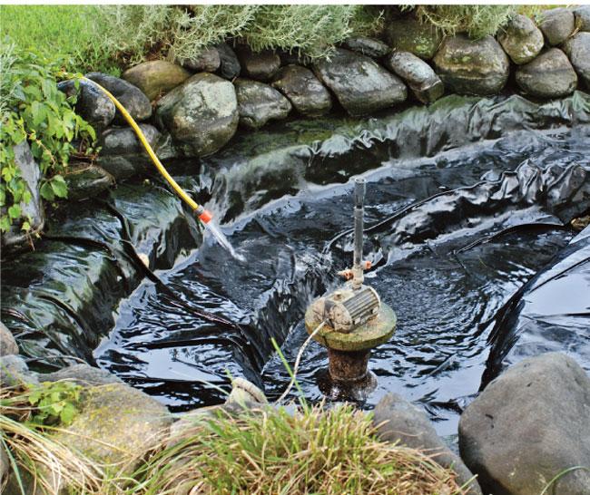 manutenzione laghetto artificiale fai da te in giardino