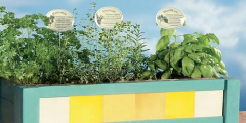 fioriera per piante aromatiche