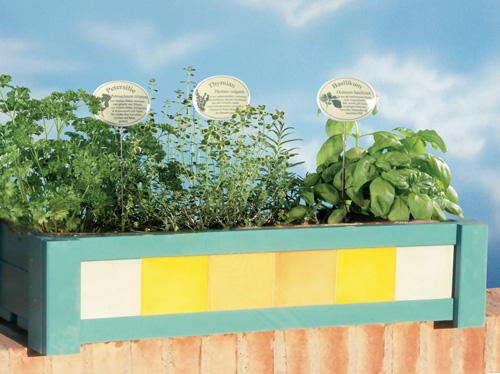 Fioriera sul davanzale per piante aromatiche facile da for Piante da fioriera