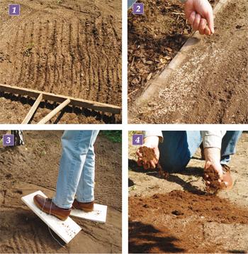 Seminare il prato fai da te in giardino - Quando seminare erba giardino ...