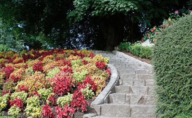 Come stabilizzare una scarpata fai da te in giardino - Scale per giardini ...