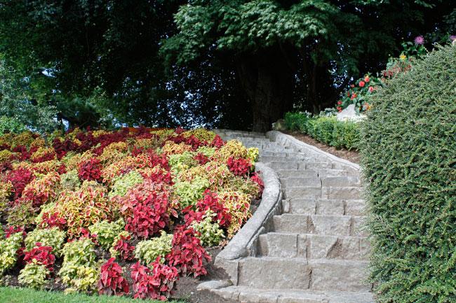 Come stabilizzare una scarpata fai da te in giardino for Idee per realizzare una fioriera