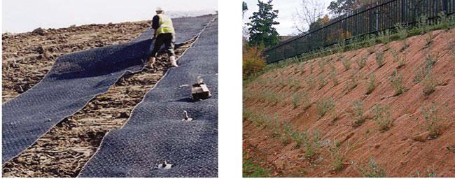 stabilizzare una scarpata, stabilizzare scarpata, stabilizzare terreno, scarpata