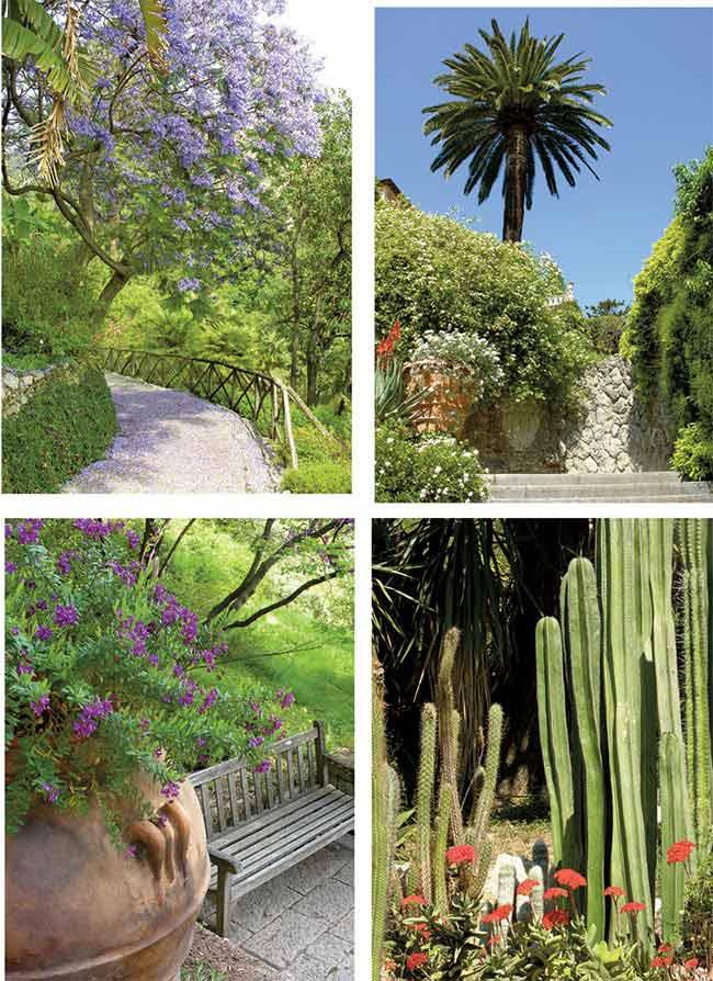 piante del giardino botanico hanbury