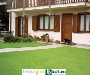 Erba fivestargrass 1