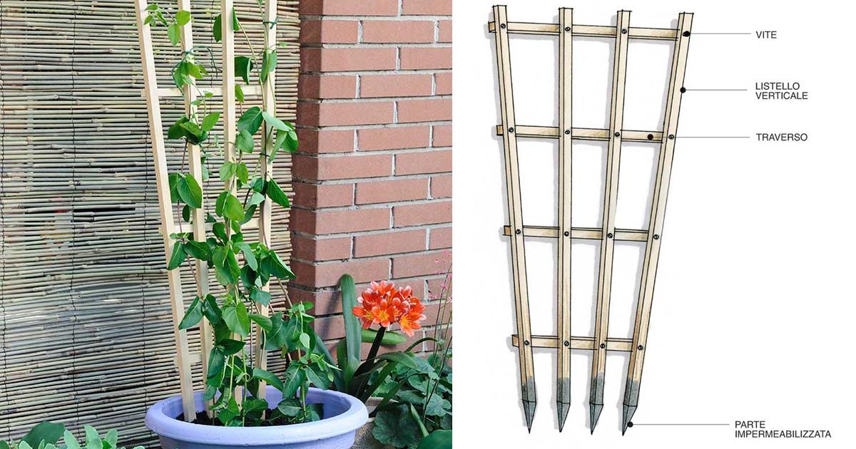 Come costruire un supporto per rampicanti in 8 mosse for I fiori della balsamina