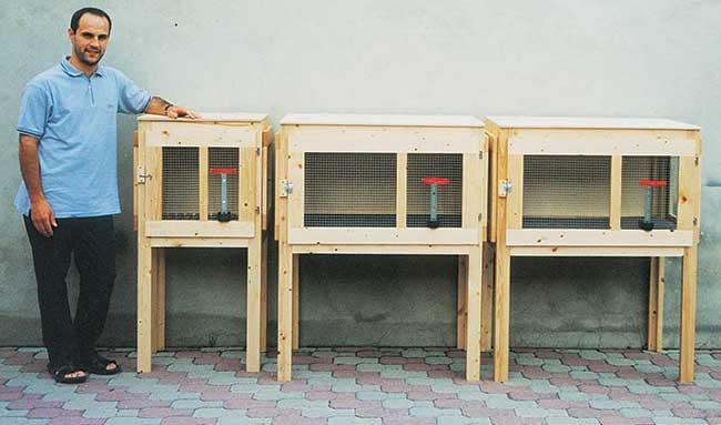 Gabbia Per Conigli Fai Da Te Progetto Completo E Dettagliato