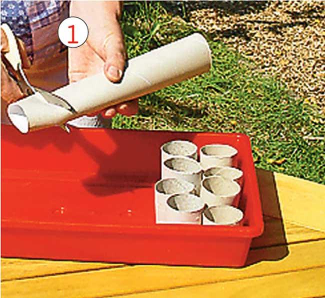 taglio cilindro cartone