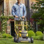 Tagliare l'erba senza fare manutenzione al rasaerba