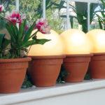 Punti luce da giardino: globi in vaso