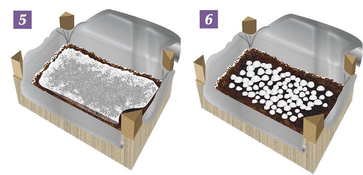 coltivazione champignon 5-6