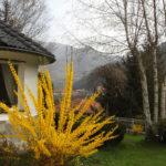 Villa Livia fiorisce in primavera