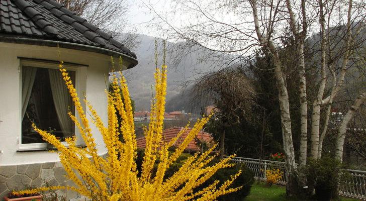 villa-livia