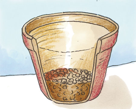 strato-argilla