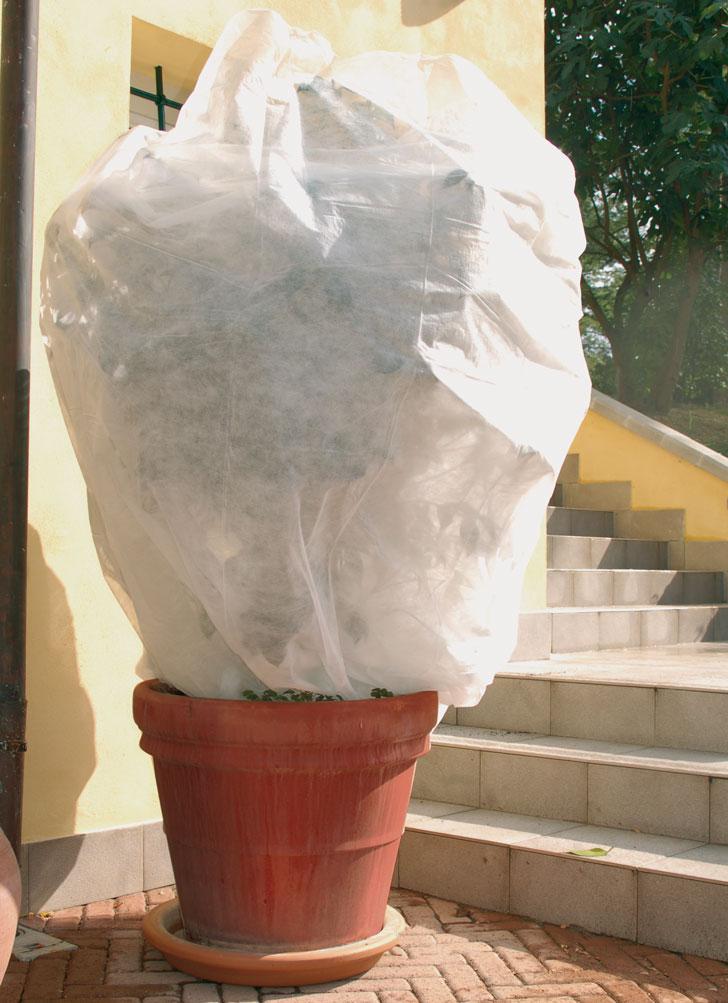 per-proteggere-le-piante-dal-freddo