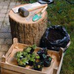 Come costruire un vaso in legno per piante grasse