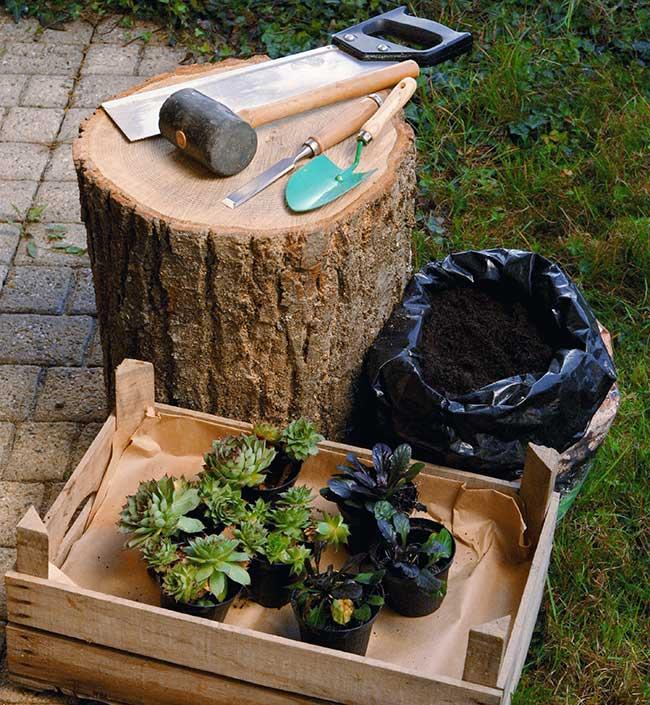 Come costruire un vaso in legno per piante grasse fai da te in giardino - Costruire un giardino ...