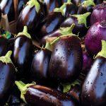 Coltivare melanzane | Guida dettagliata
