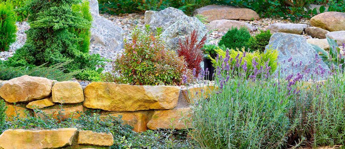 Amazing giardino roccioso come progettare al meglio un - Sistemare un giardino ...