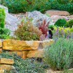 Giardino roccioso | Come progettare al meglio un rock garden spettacolare
