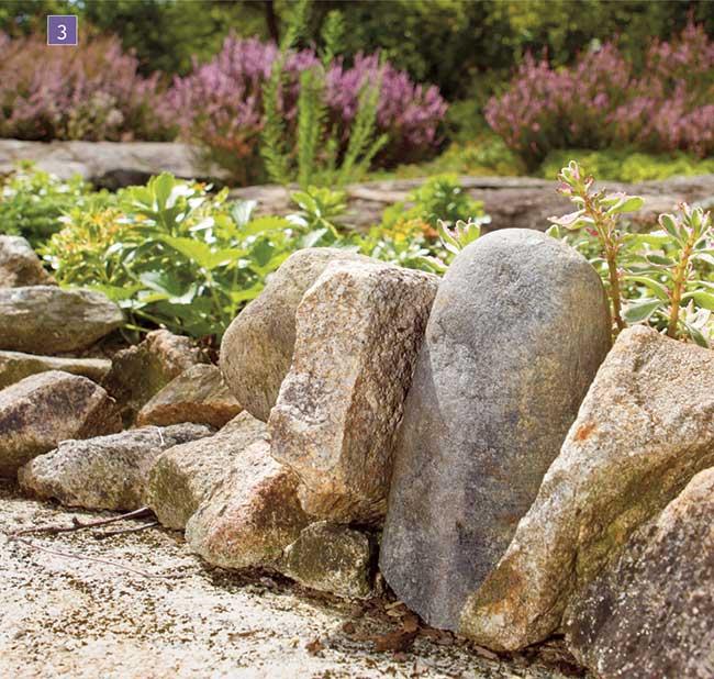 Giardino roccioso come progettare al meglio un rock - Costruire giardino roccioso ...