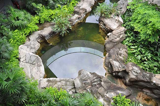 Giardino roccioso come progettare al meglio un rock - Giardino con laghetto ...