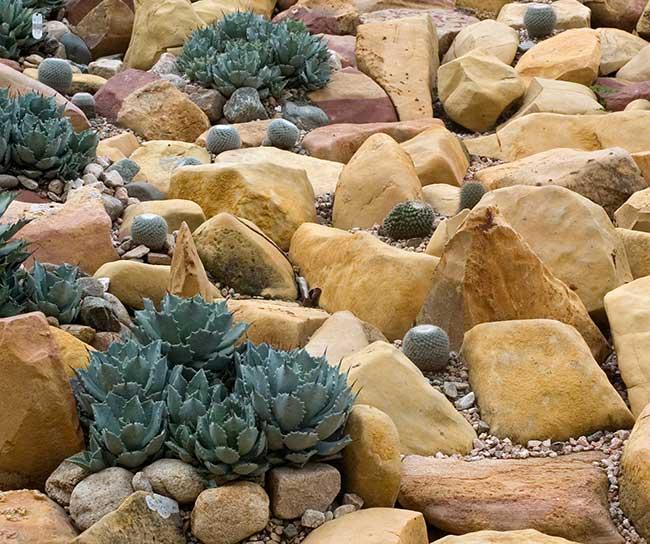 Giardino roccioso come progettare al meglio un rock - Piante x giardino ...