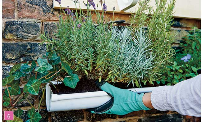 Nascondere griglia giardino excellent la soluzione pi - Nascondere griglia giardino ...