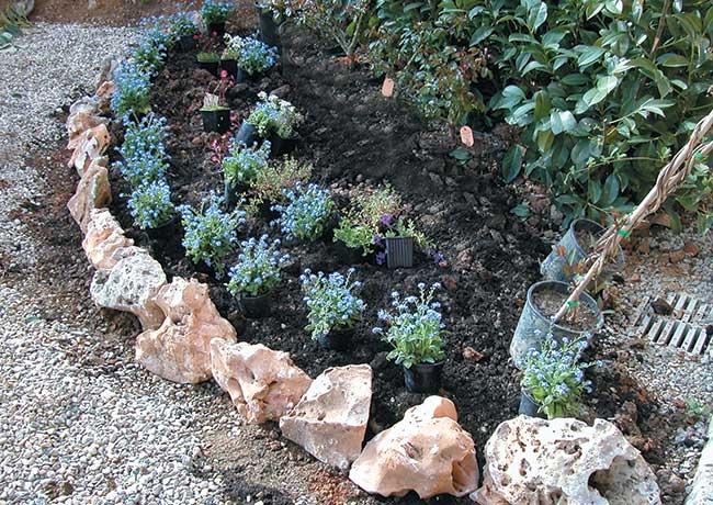 Se vogliamo realizzare una bordura di piante erbacee for Aiuole con sassi bianchi