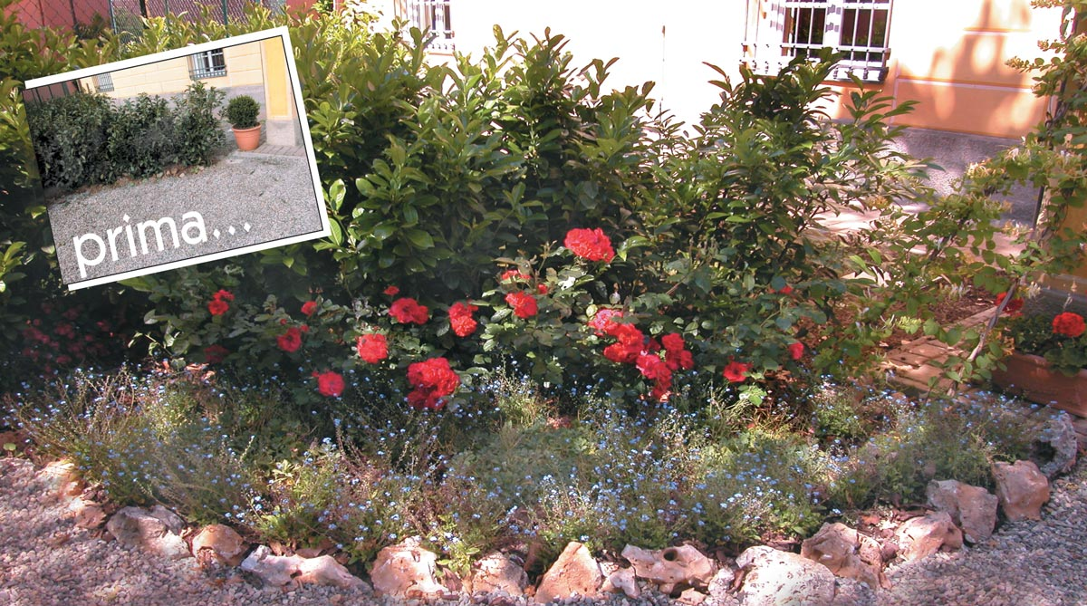 Idee cordoli giardino con tegole for Aiuole giardino idee