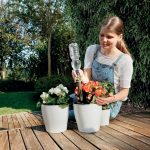 Come innaffiare le piante in vacanza | Il sistema Aquaflora Holiday